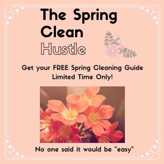 Spring clean hustle graphic